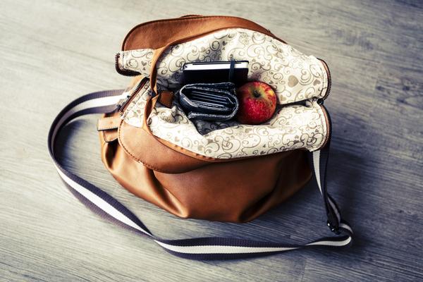 inside of a purse
