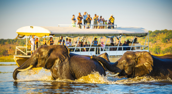 Best 5 Safari Destinations in Botswana, Africa