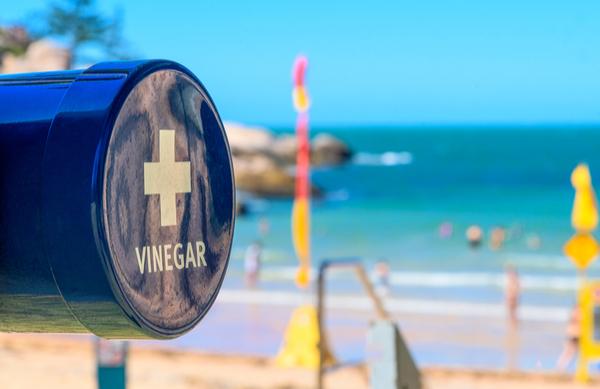vinegar at the beach
